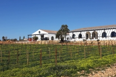 algarve_views_quinta_dos_santos_01-1