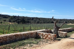 algarve_views_quinta_dos_santos_04